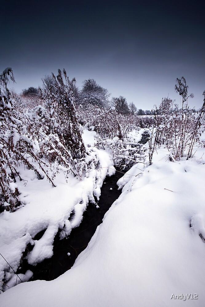 Black Winter Stream by Andy Freer