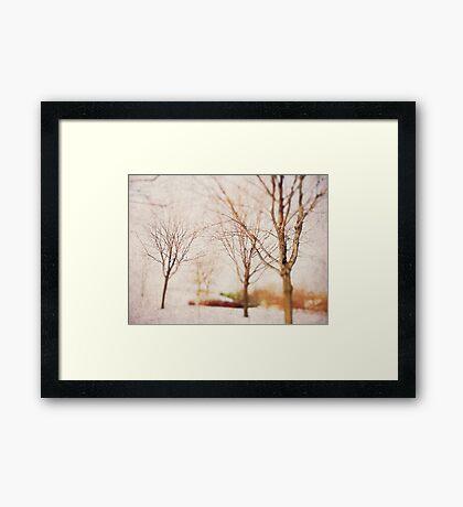 Woodland Dreams Framed Print