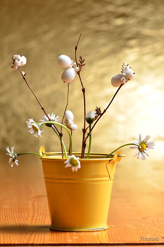 Daisies in a yellow bucket by 7horses