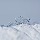 Little Snowflake by marina63