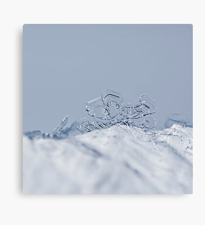 Little Snowflake Canvas Print