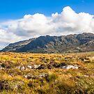 View over the moss of Mointeach Mhor to Sgurr an t Sasunnnaich by Hugh McKean