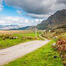 Landscape, Single track road, Kinloid to Loch Morar by Hugh McKean