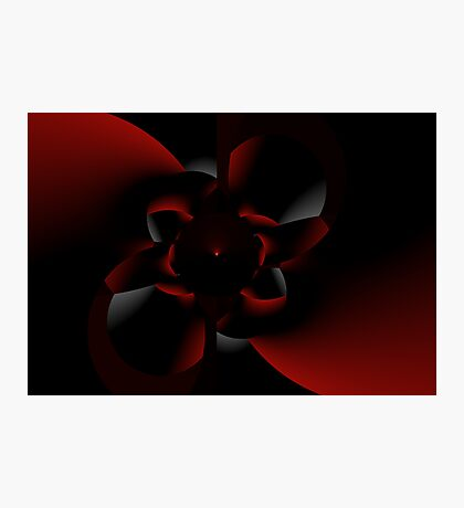 Out of The Darkness A Rose Appears Photographic Print