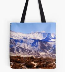 Spring Thaw - High Schells Tote Bag