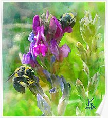 Floral Design Bumblebees and Flowers Poster