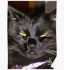 ACEO Abstract Black Cat 10 Poster