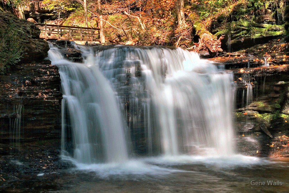"The New ""Look"" of Wyandot Falls by Gene Walls"