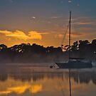 Tamar River Dawn by fotosic