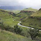 Bushman River by Peter Edwards