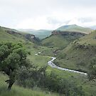 Bushman River at Dawn by Peter Edwards