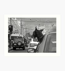 Afternoon traffic reports on WOOF- FM.  Art Print