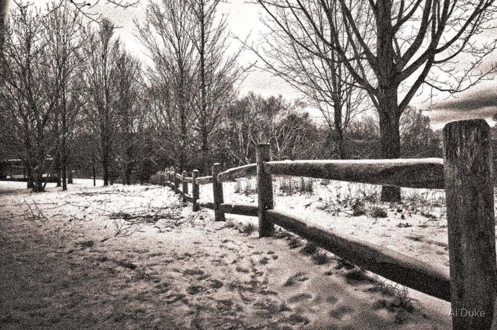 Fence In The Snow by Al Duke