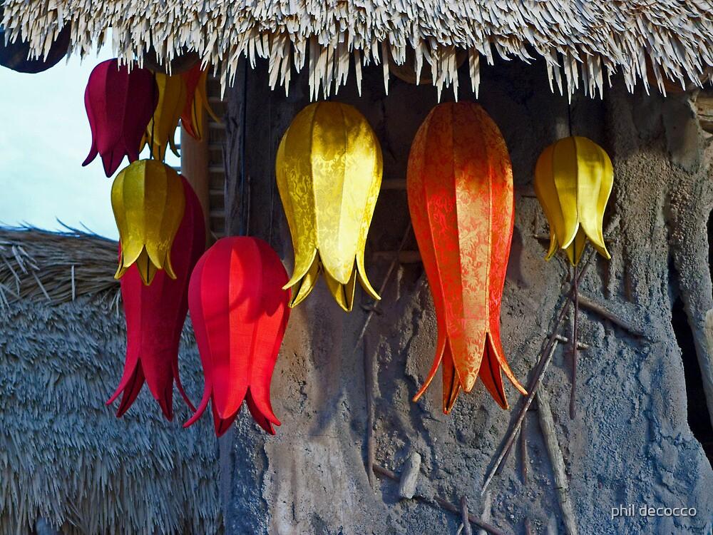 Tulip Lanterns by phil decocco