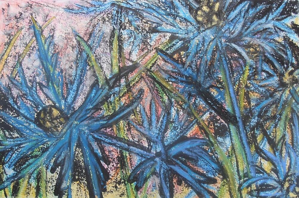 Eryngium by Susan Scott