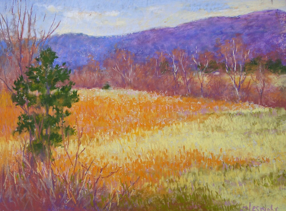 Dry grass in February by Julia Lesnichy