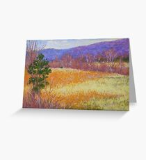 Dry grass in February Greeting Card