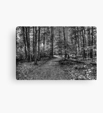 Forest 2 Canvas Print