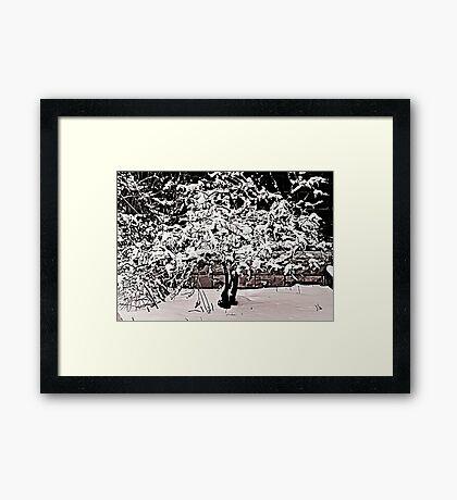 Snow Tree © Framed Print