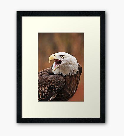 His Majesty ~ Framed Print
