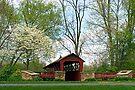 Spring at the General Burrows Memorial Covered Bridge by Gene Walls