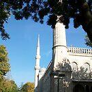 Outside the Mosaic in Istanbul, Turkey by DeBorah Davis, LMT
