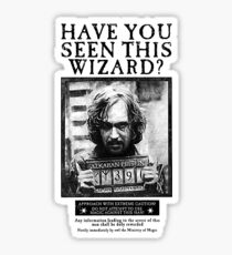 Have You Seen This Wizard? Sticker