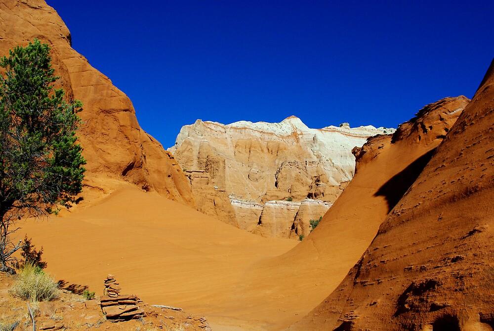 Kodachrome rocks, Utah by Claudio Del Luongo