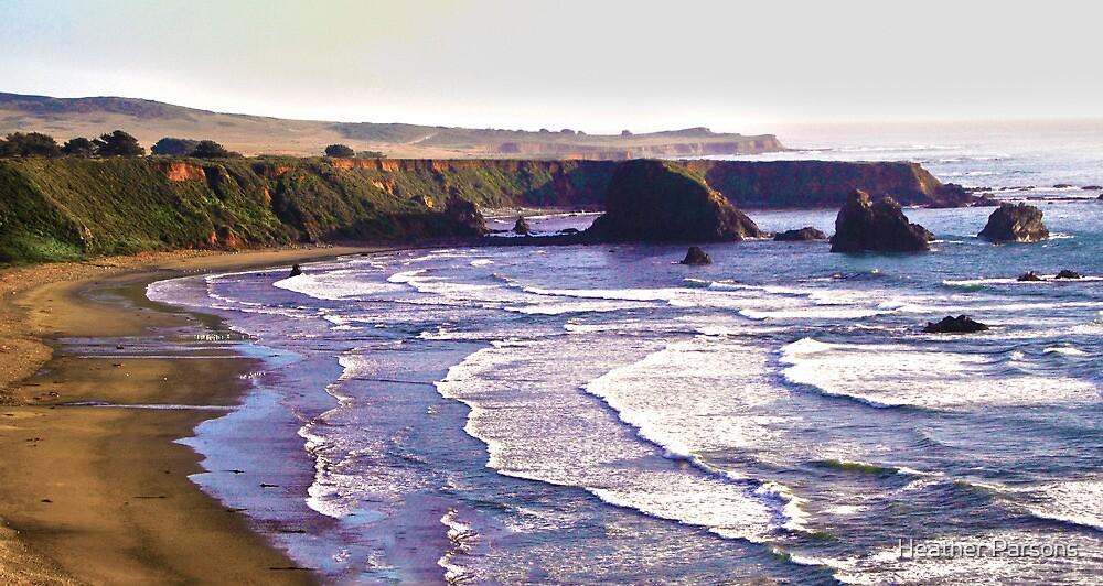 Beautiful California Coastline by Heather Parsons