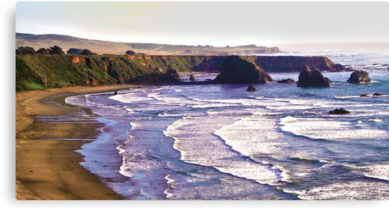 Beautiful California Coastline by Heather Parsons