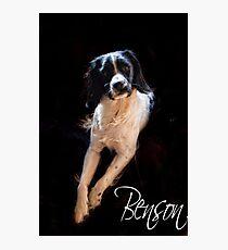 Benson  Photographic Print