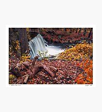 Bridgton Falls Photographic Print