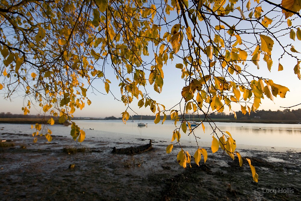 Autumn on the Deben River by Lucy Hollis