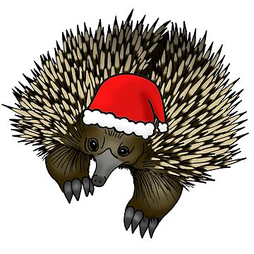 Christmas echidna by Kel2