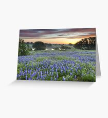 Bluebonnet Field Sunset in the Texas Hill Country Greeting Card