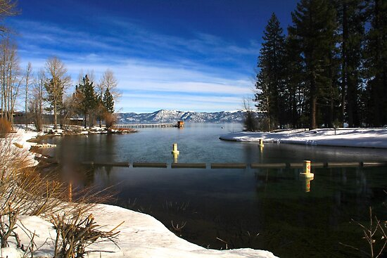 Into the Truckee by Barbara  Brown