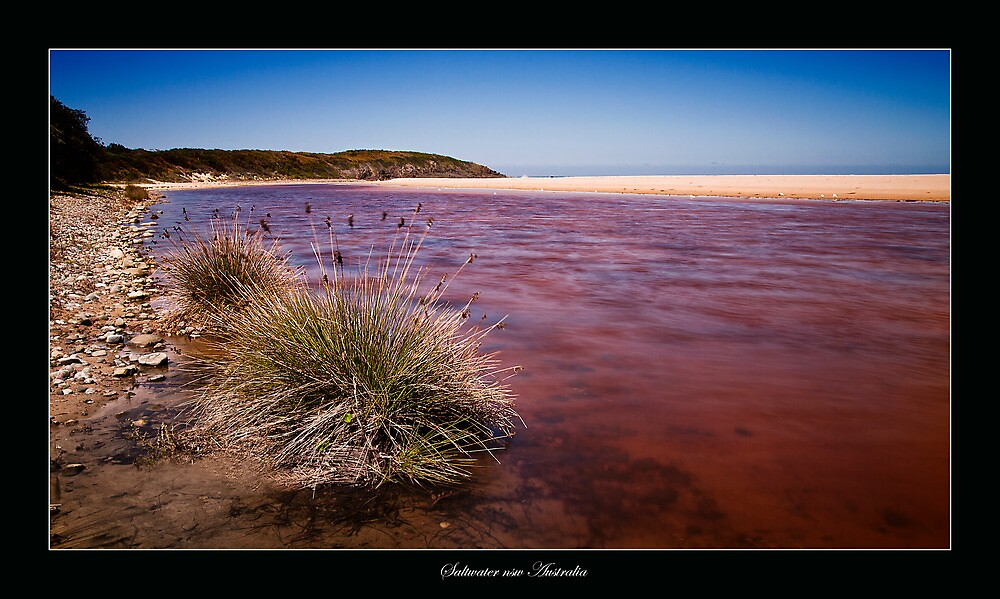 Saltwater nsw Australia 01 by kevin chippindall