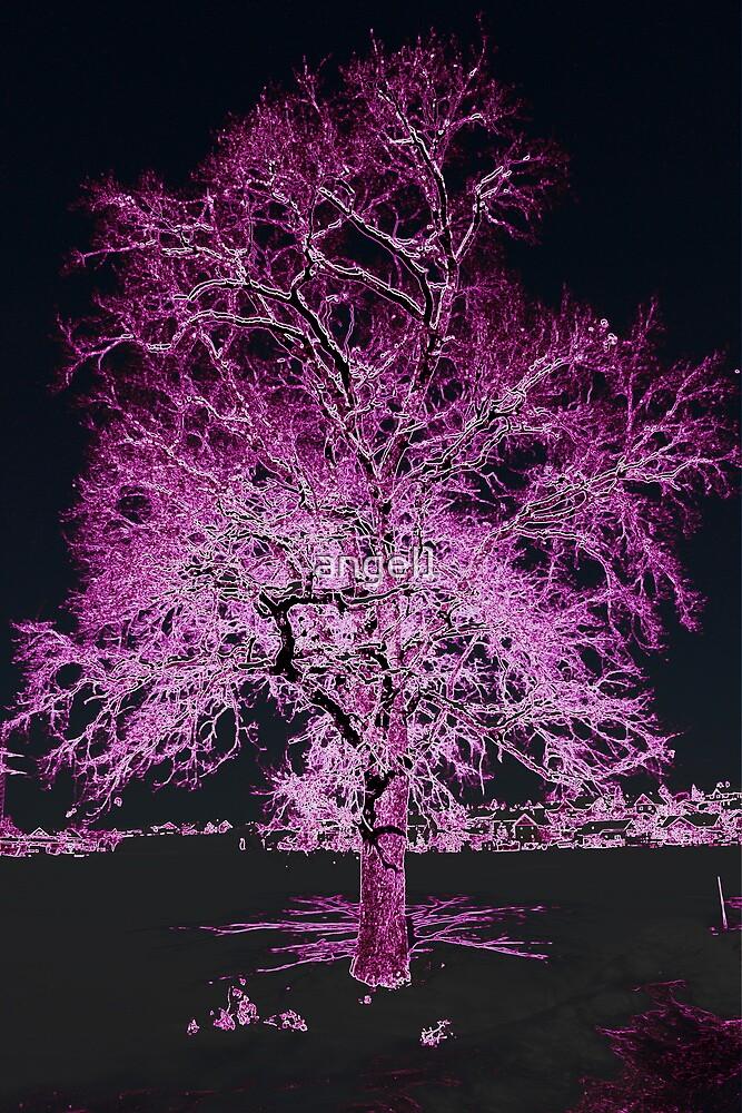 Oak in Neon Purple by ©The Creative  Minds