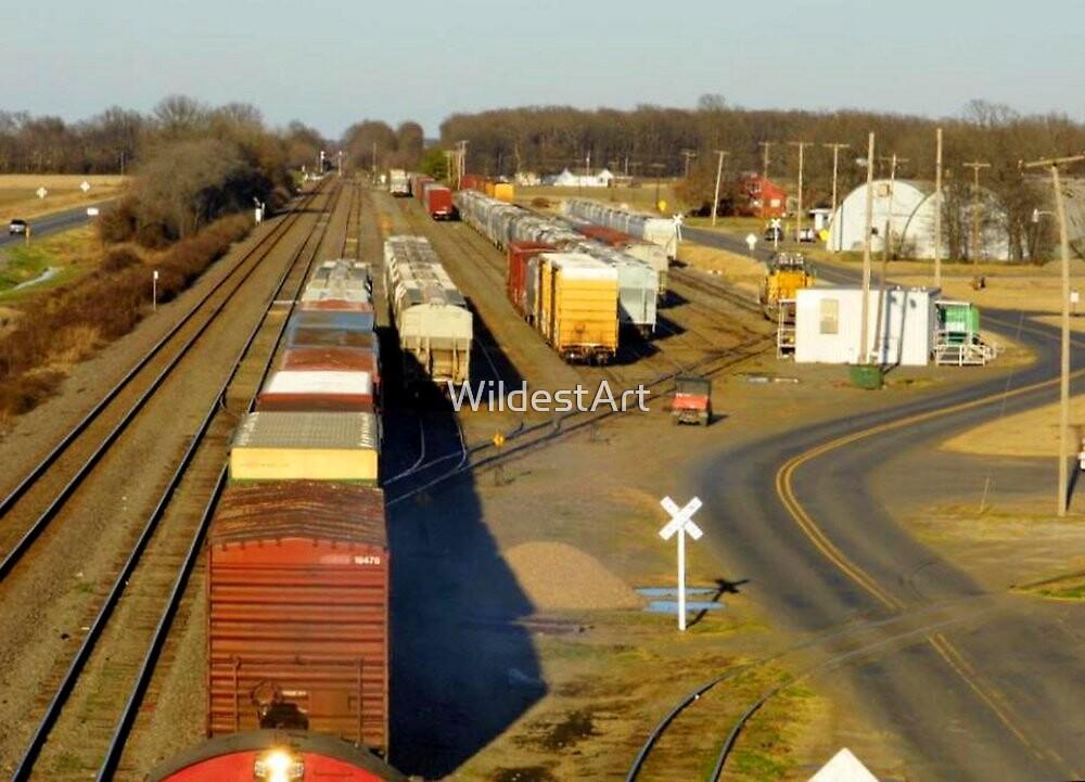 Above The Tracks by WildestArt