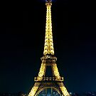 Paris at night- Eiffel Tower by Andrew  MCKENZIE
