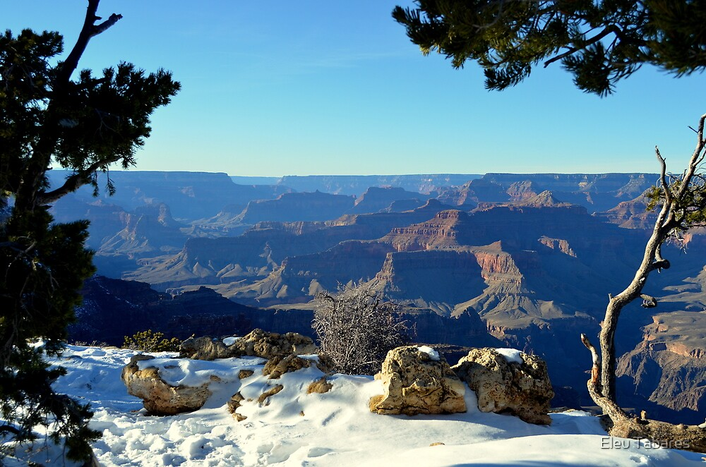 Grand Canyon In The Winter by Eleu Tabares