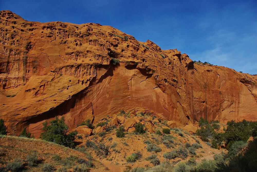 Beautiful red rock wall on Burr Trail Road, Utah by Claudio Del Luongo