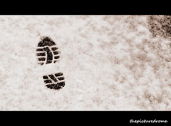 Snow Step by thepicturedrome