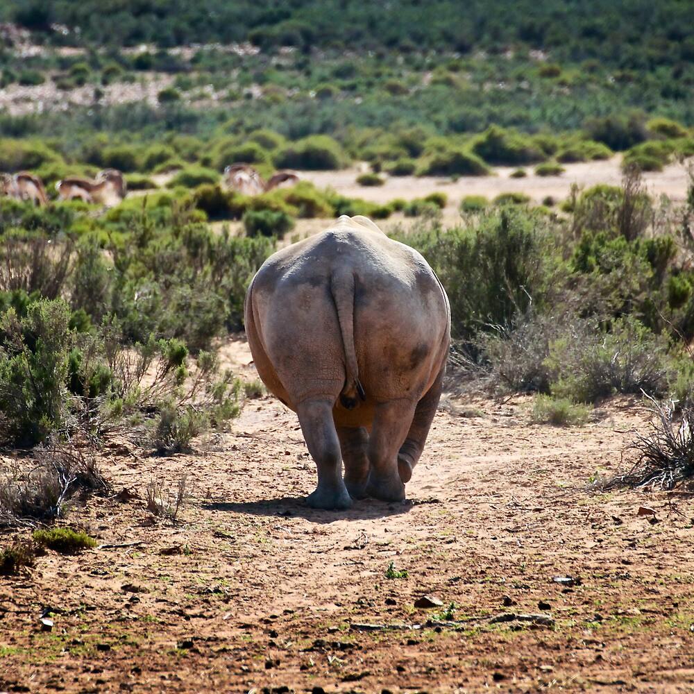 Rhino Rear. by EdPettitt