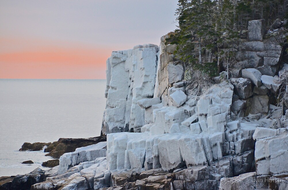 Otter Cliffs Encased In Ice, Acadia by Dan Hatch