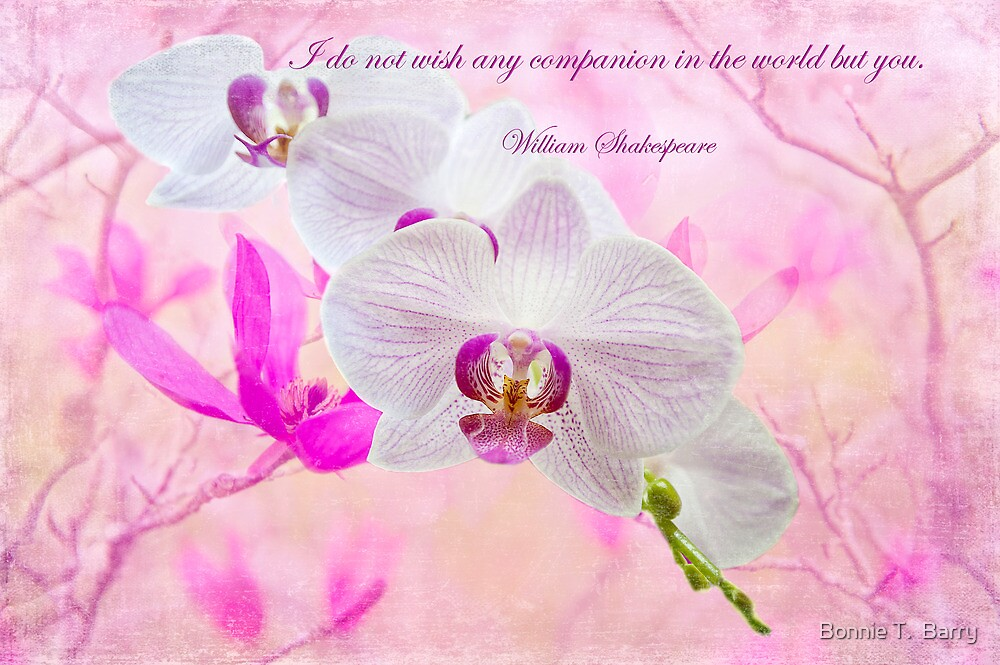 I do not wish any companion in the world but you . . . by Bonnie T.  Barry