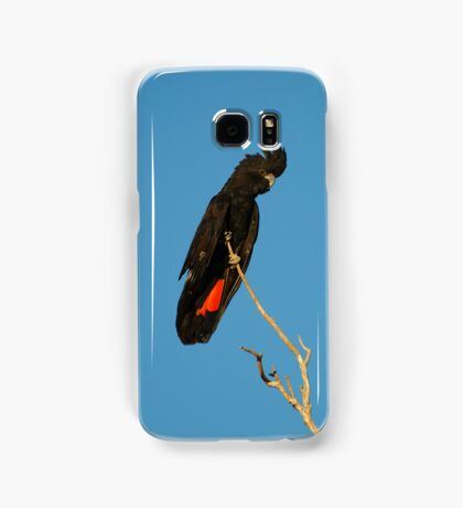 Red Tailed Black Cockatoo Samsung Galaxy Case/Skin