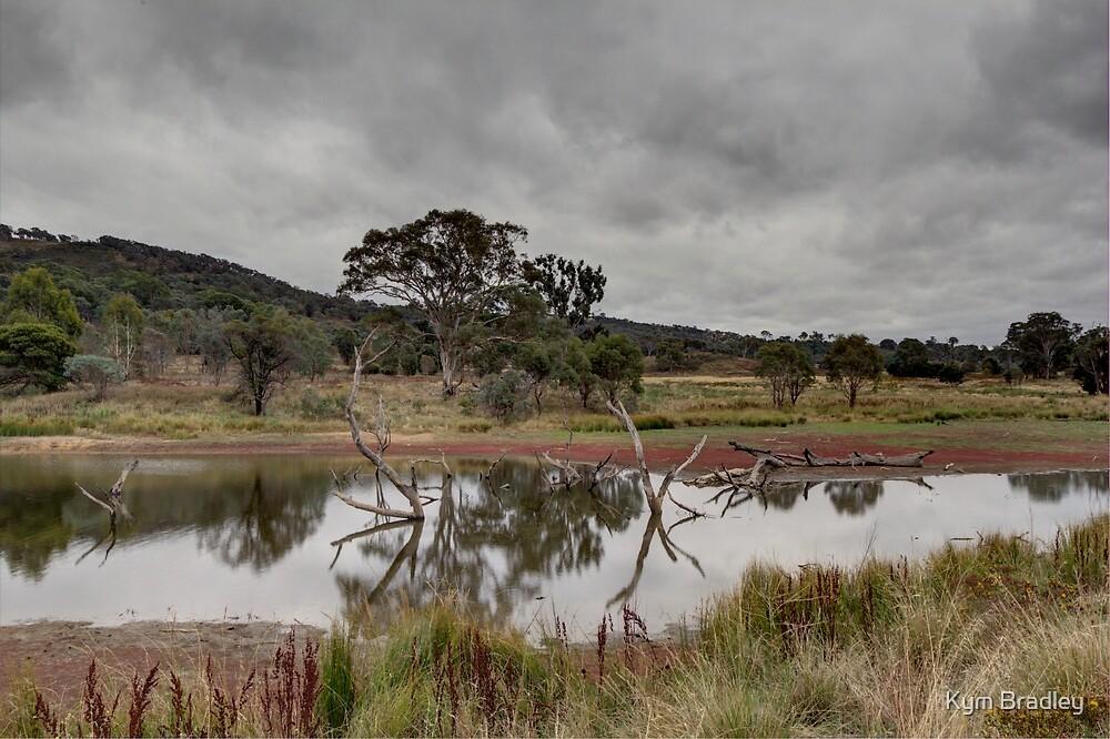 Dry Land Ahead Tin Hut Rural NSW Australia  by Kym Bradley