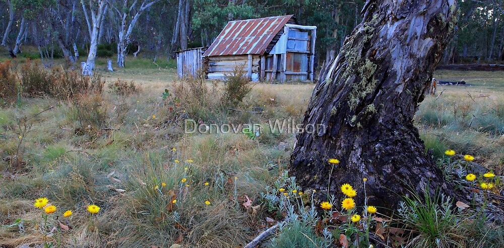 Davies Plain Hut by Donovan Wilson