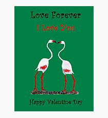 Bird In Love Valentine Day Special Photographic Print